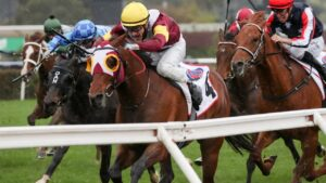Mark Zahra got the best out of Fierce Impact in the Group 1 Makybe Diva Stakes at Flemington. Picture: Getty Images