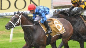 An improved showing is expected from Funstar this weekend. Picture: AAP