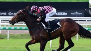 Rothfire is the fourth horse locked in for The Everest. Picture: Trackside Photography