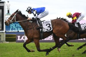 Mugatoo will lead Australian Bloodstock's assault on the home front.