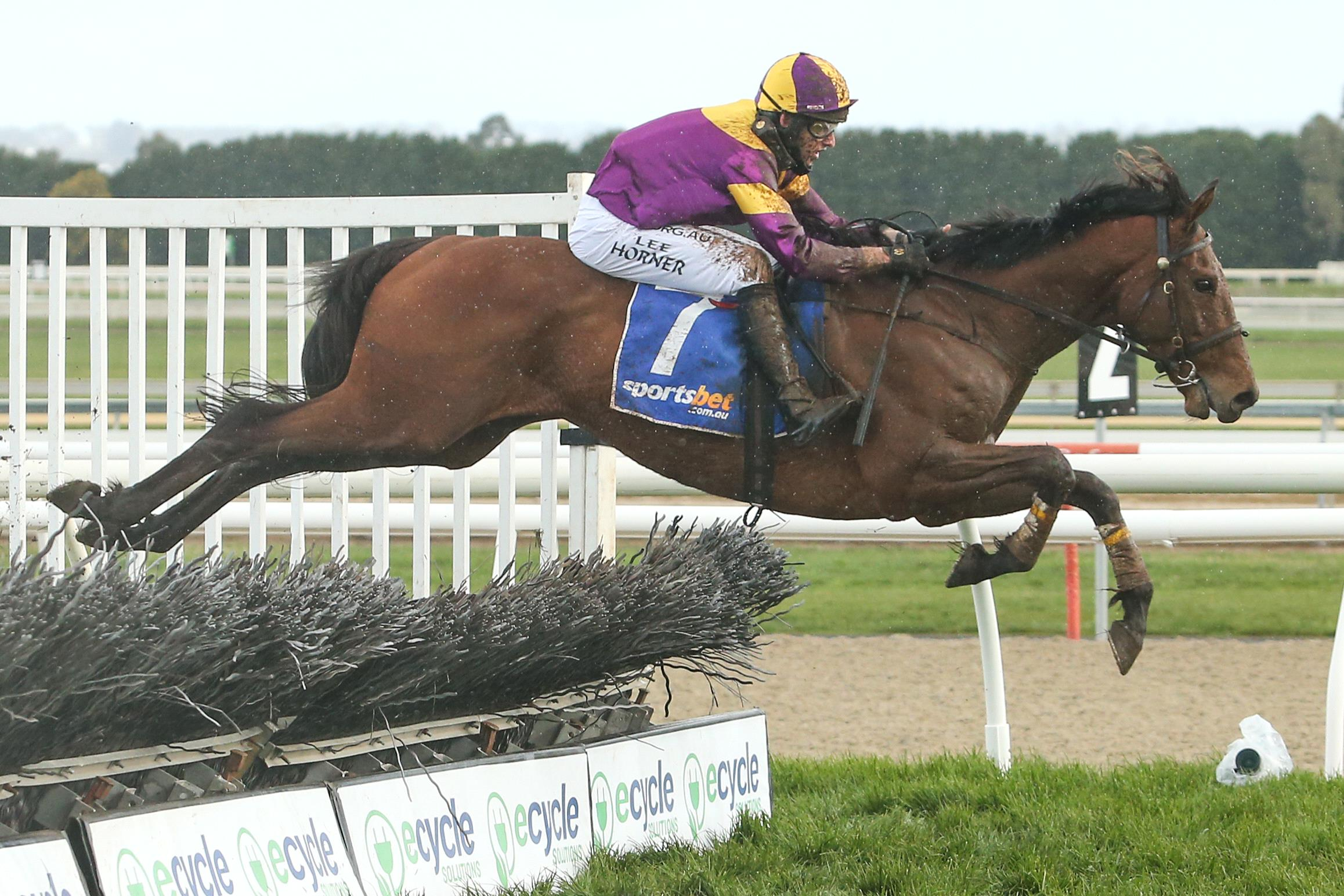 Instigator clears an obstacle in Sunday's JJ Houlahan Hurdle at Ballarat.
