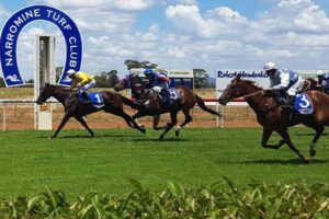 It's Narromine Cup Day on Sunday.