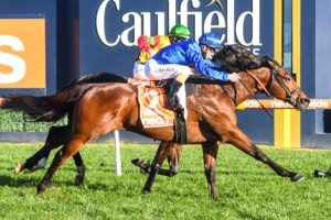 With a liking for Caulfield, Viridine finds the right race Saturday.