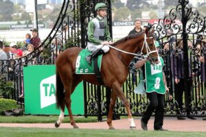 Kings Will Dream prior to his win in the Turnbull Stakes last year.