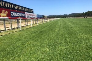 I'm keen on one at Coffs Harbour on Saturday.