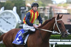 James McDonald rides Nature Strip in a trial on Wednesday.