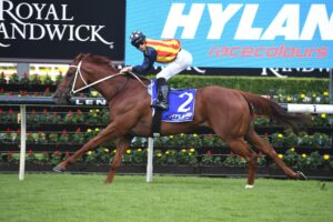 Nature Strip is one of a list of Chris Waller triallists.