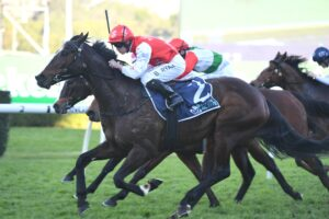 Inanup was an impressive winner at the Randwick Racecourse in Sydney.