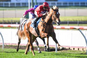 Brooklyn Hustle scored what turned out to be a soft win at Moonee Valley.