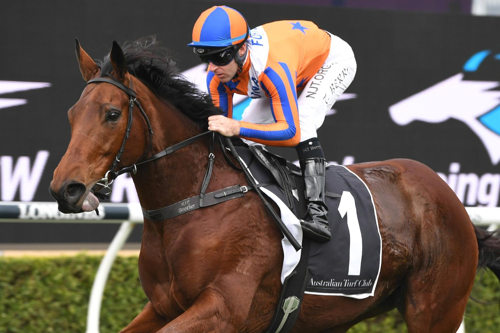 Gun Kiwi mare Melody Belle will be in action at the Randwick trials on Friday.