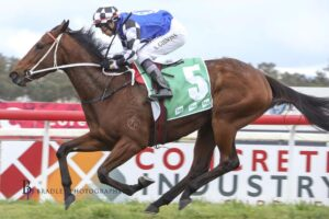 Andrew Gibbons winning aboard Jaja Chaboogie earlier this month at Tamworth.