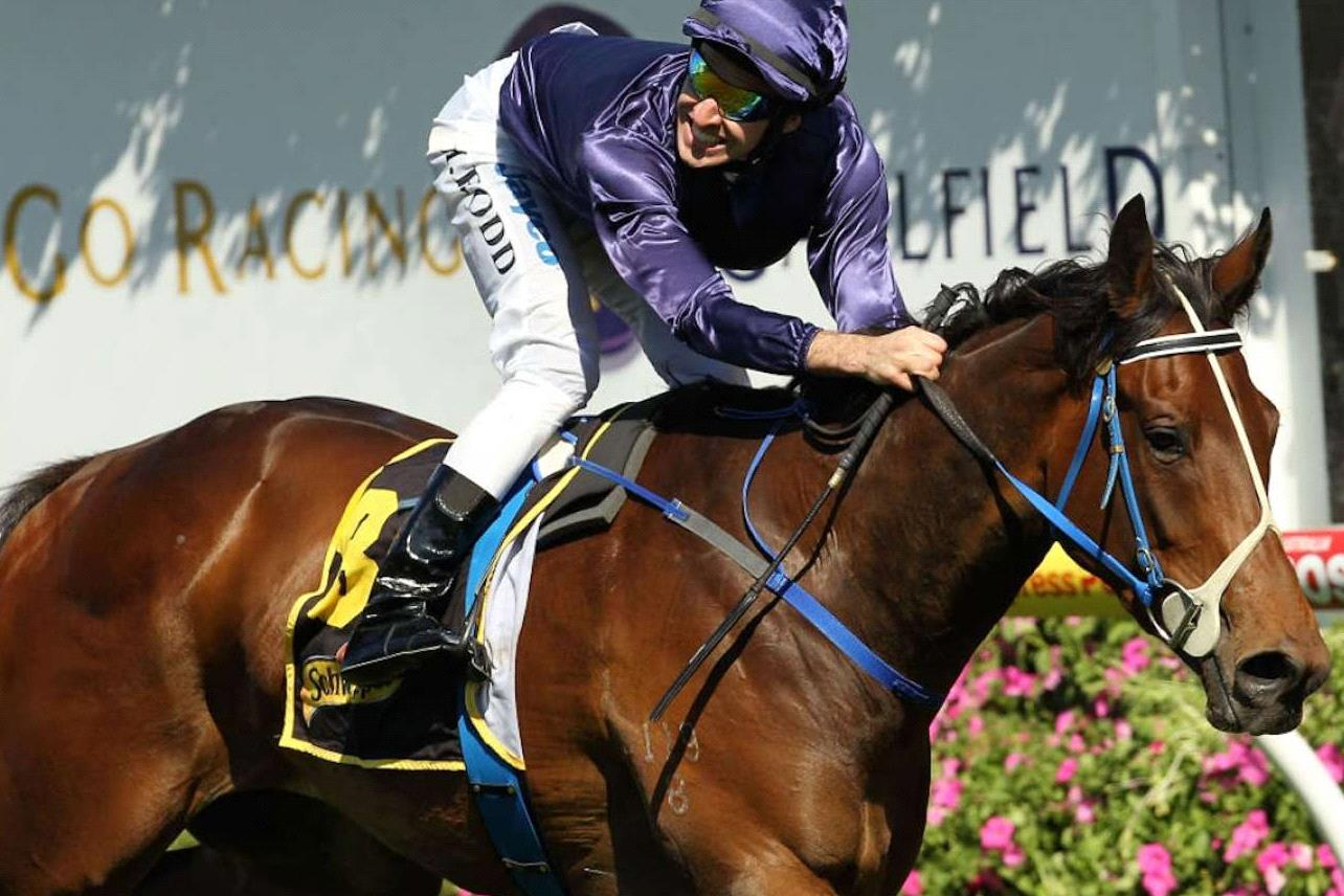 A son of the brilliant Atlantic Jewel will debut at Friday'