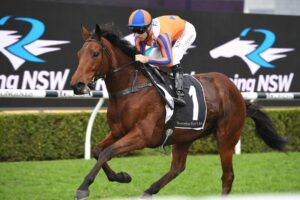 Melody Belle has spring targets in Sydney.