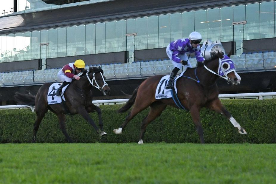 Dealmaker defeats Sambro in the Racing To Win Handicap.
