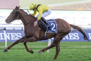 The 2020 Queen Elizabeth Stakes winner Addeybb will run in the Prince Of Wales's Stakes at Royal Ascot.