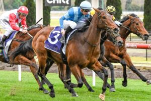 Crosshaven made it two from two at The Valley on Saturday.