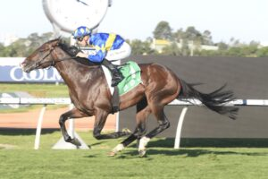 Dawn Passage is second favourite for the Inglis Guineas.