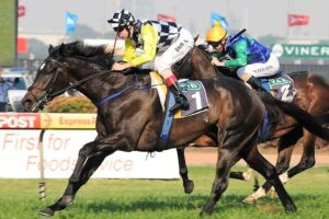 A son of So You Think will contest Saturday's Listed Andrew Ramsden at Flemington.
