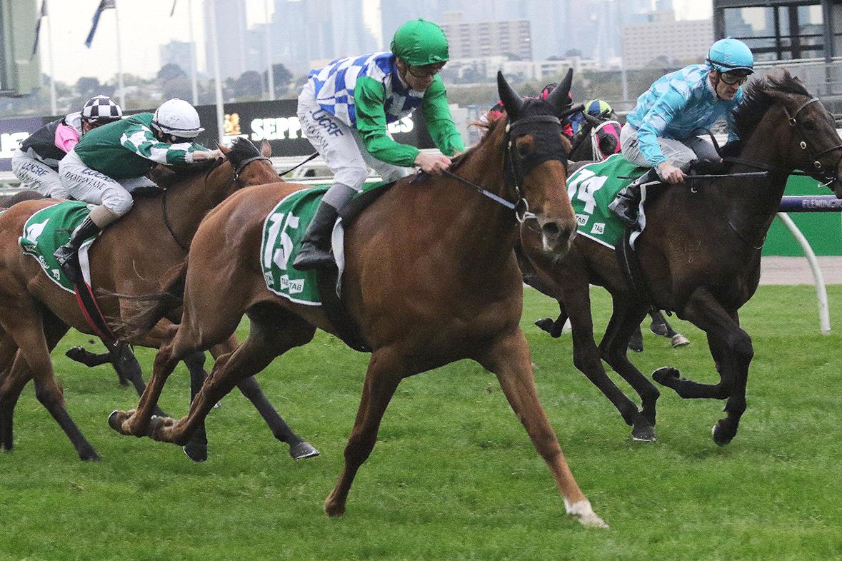 Moonlight Maid will be out for another Flemington win in the VRC Oaks.