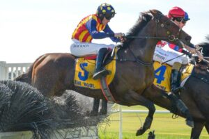 Shane Jackson will ride Ablaze in the Grand Annual Steeplechase at Warrnambool.