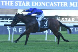 Happy Clapper won the Villiers Stakes in 2015 before finishing second to his nemesis Winx the following year in the Doncaster Mile.
