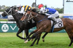 Night's Watch sticks his neck out to win the Neville Sellwood.