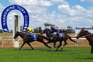 Country racing at Narromine Thursday