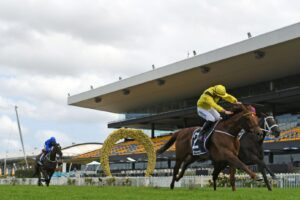 Addeybb and Verry Elleegant fighting it out in the Ranvet Stakes.