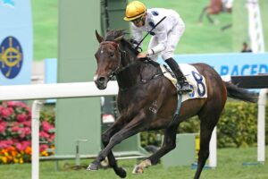 Golden Sixty is hot favourite for Sunday's HK Derby.