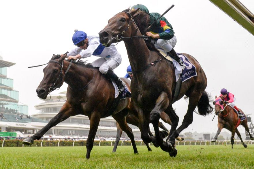 Catalyst (left) and Alligator Blood (right) duke it out in the CS Hayes Stakes.
