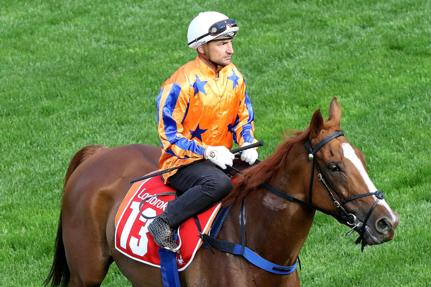 Te Akau Shark will have another crack at a Group I win in New Zealand on Saturday.