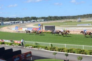 There are a couple of good things at Wyong Thursday