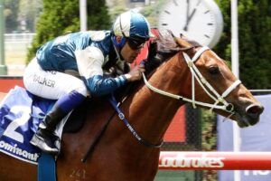 Tagaloa is in betting markets but won't be on the Gold Coast for the Magic Millions.