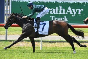 Tilia Rose wins the Max Lees Classic at Newcastle on Saturday.
