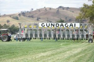 The best bet for this weeks Country Crackers comes from Gundagai.