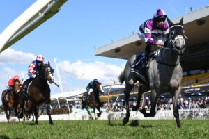 Lucicello coasts to victory at Rosehill.