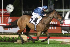 Viddora's name is on some of the bigger bets written ahead of Saturday's meetings.