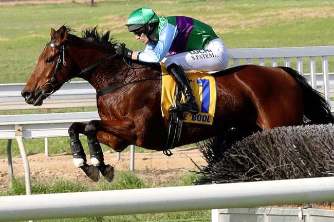Zed Em and Steven Pateman achieved another feature race win in the Great Eastern Steeplechase.