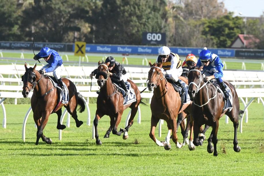 Will Saturday be third time lucky for Winx in the Queen Elizabeth Stakes?