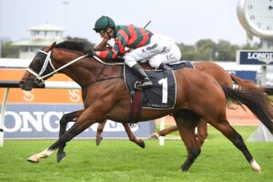 The Autumn Sun will be back at Rosehill on Golden Slipper day.