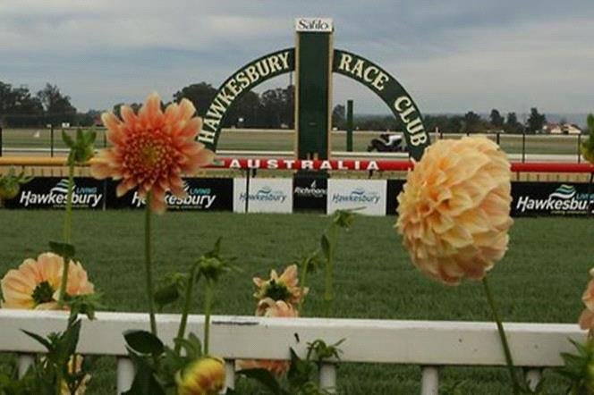 The best bets are early in the day at Hawkesbury