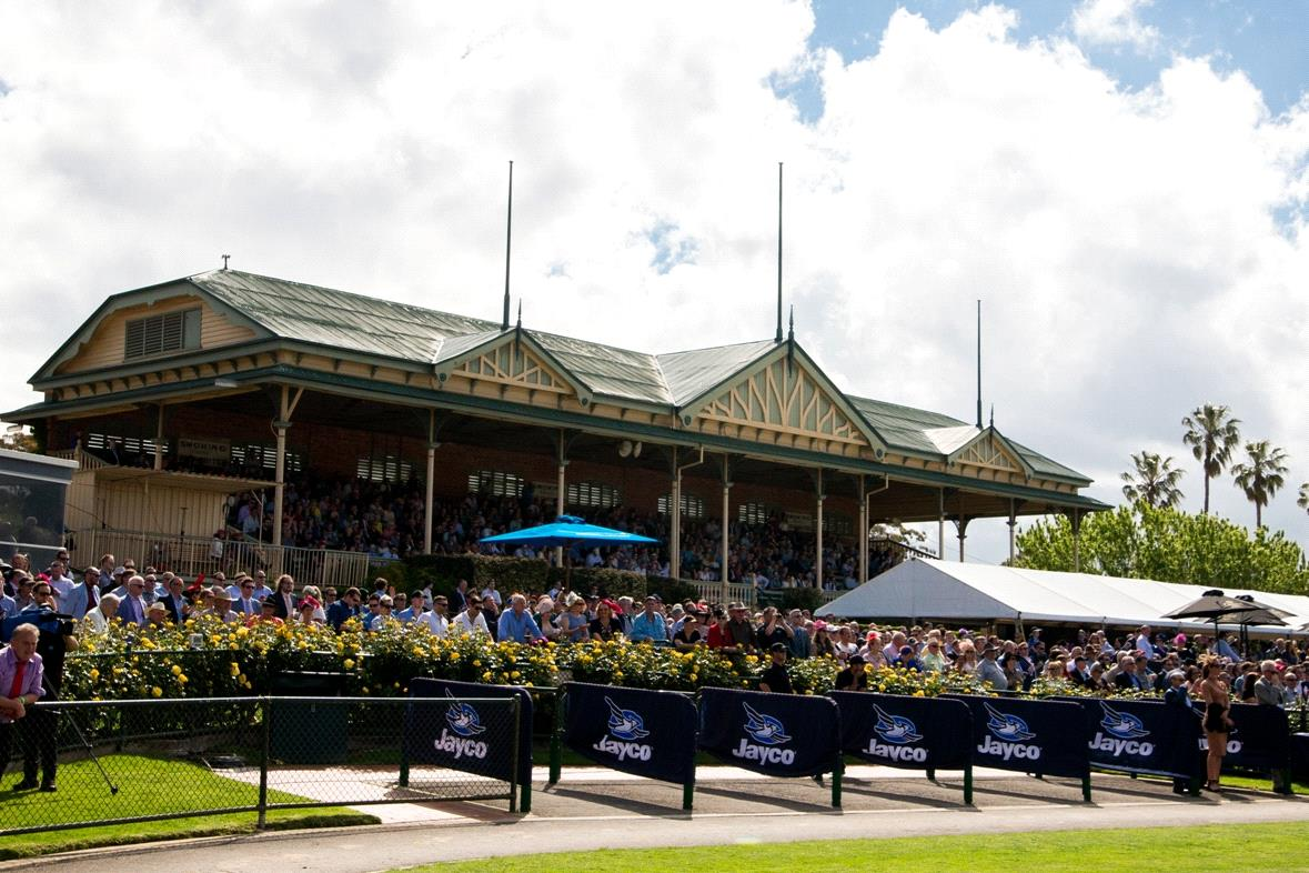 Punters will be able to watch races from the historic grandstand at Bendigo on Saturday.