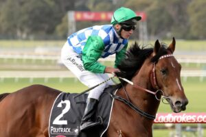 Fifty Stars is the latest former Darren Weir trainee to be placed with a new stable.