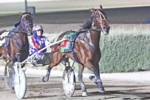 Tornado Valley was too good for his opponent's in the 2018 Inter Dominion Trotters final.