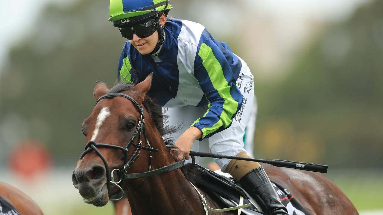 Brandenburg is looking to get back to winning form in the $500