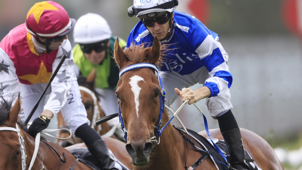 Gytrash is now doubtful for the Group 1 Kingsford-Smith Cup with uncertainty over flights into Queensland. Picture: Getty Images