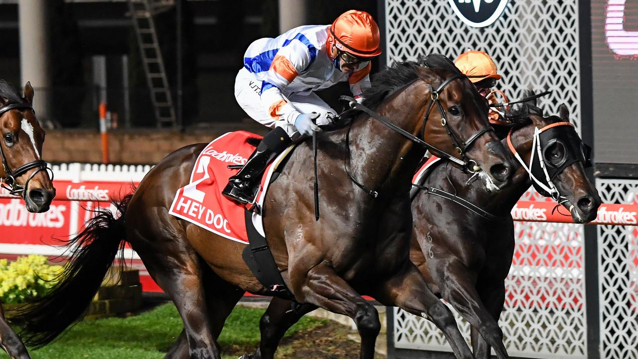 Hey Doc winning last year's Group 1 Manikato Stakes at a Moonee Valley night meeting. Picture: Racing Photos via Getty Images