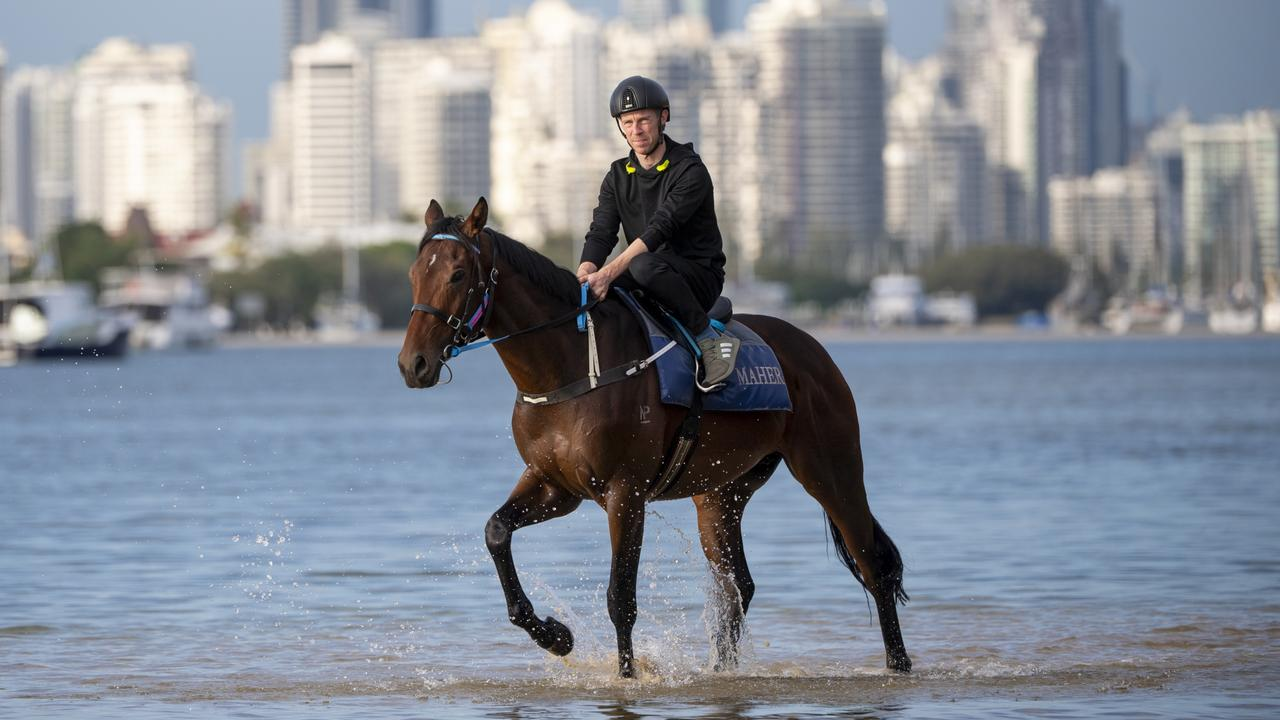 John Allen rides Explosive Jack at The Spit on the Gold Coast on Thursday morning. Picture: Michael McInally/Racing Queensland