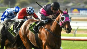 Inn Keeper has been kept in work after winning the Wangoom Handicap at Warrnambool. Picture: Vince Caligiuri/Getty Images