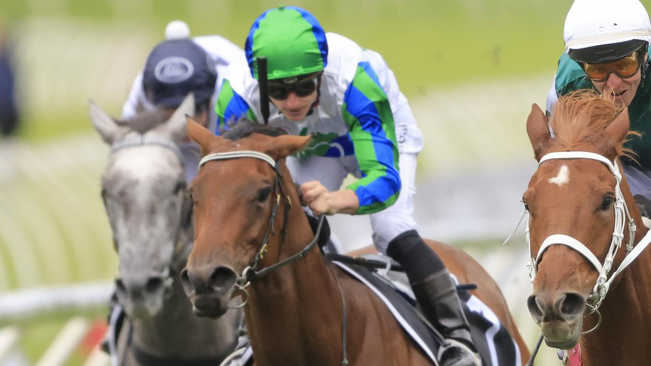 Bargain is the new Queensland Oaks favourite. Photo: Mark Evans/Getty Images